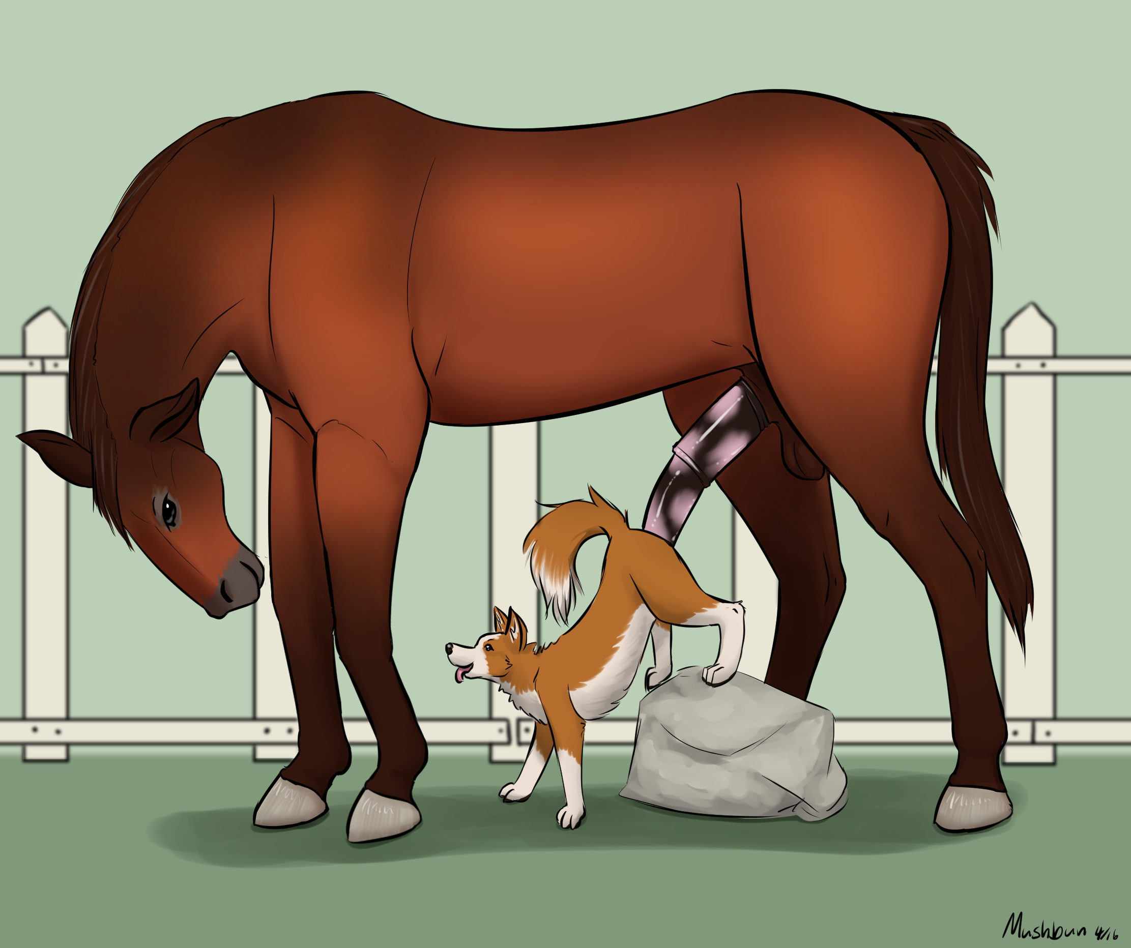 1488075_Mushbun_horse_and_dog_1