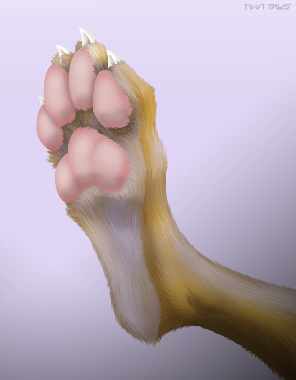 1520528469.footpaws_fur_paw