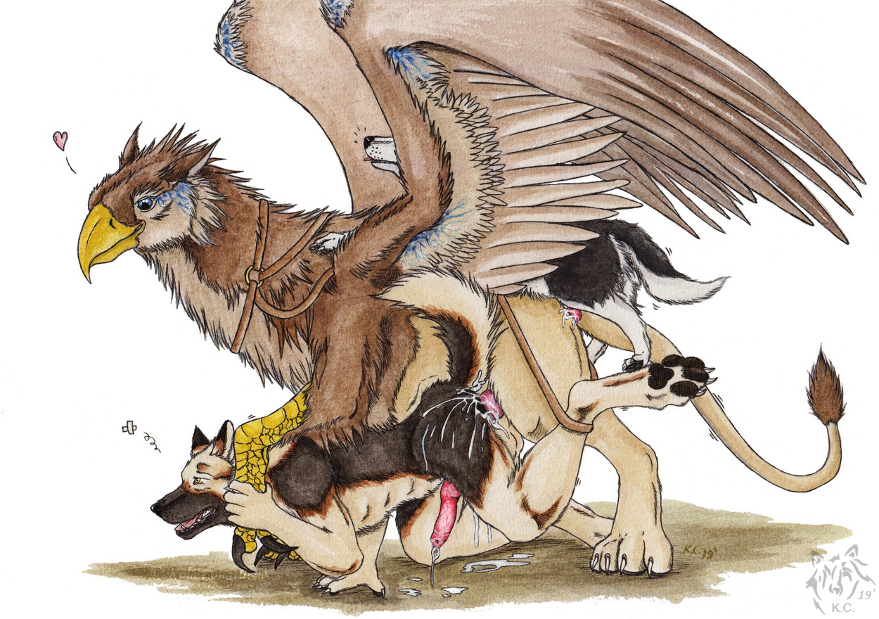 1557756015.kola_gryphon_riding_gone_rough