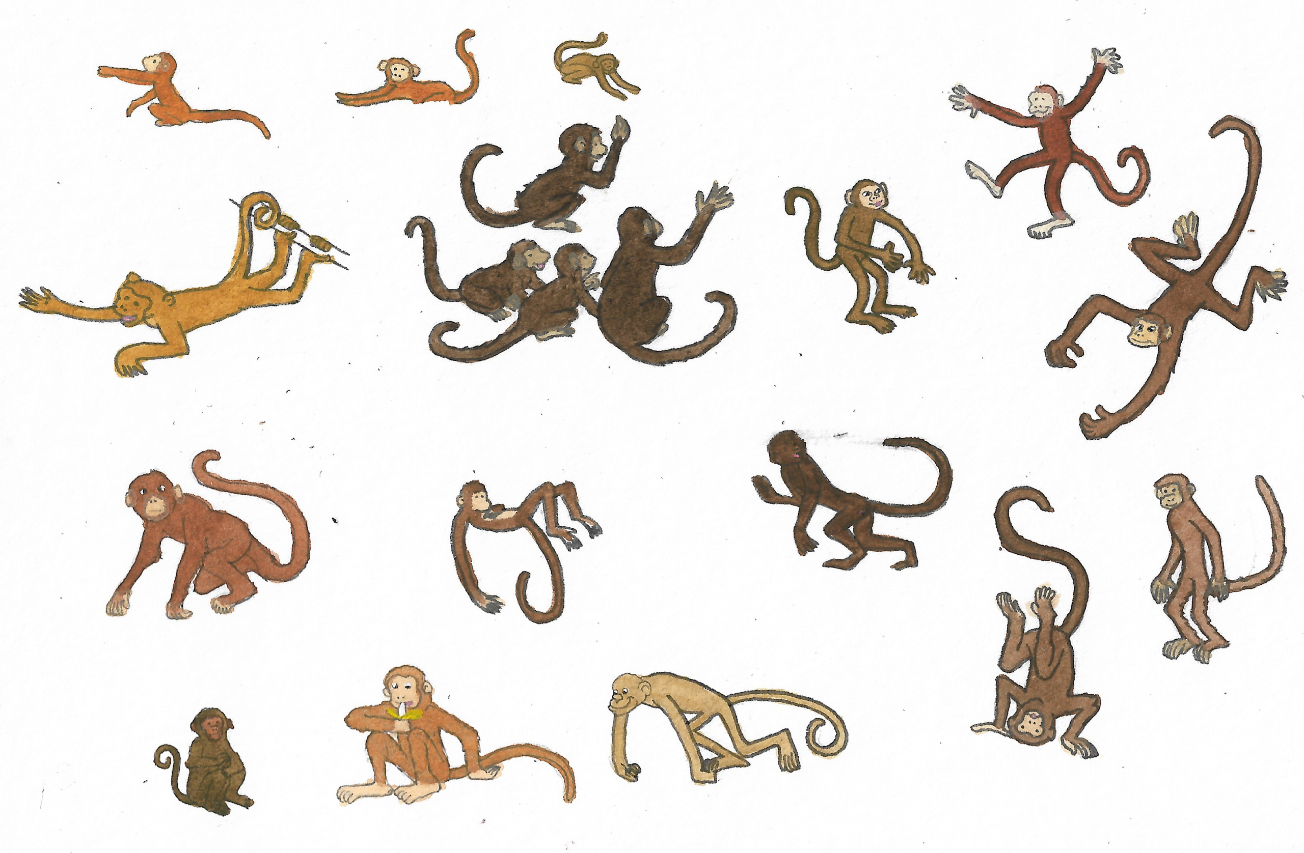 monkeys_by_brazilianferalcat_ddhctko