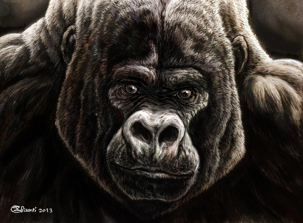 mountain_silverback_godfather_by_bisanti_d5qypn5-fullview